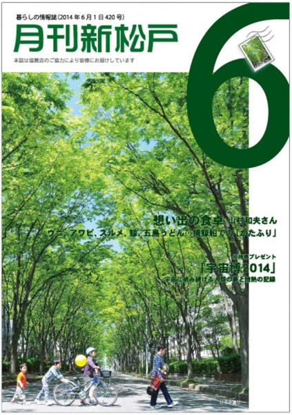 hyoshi6