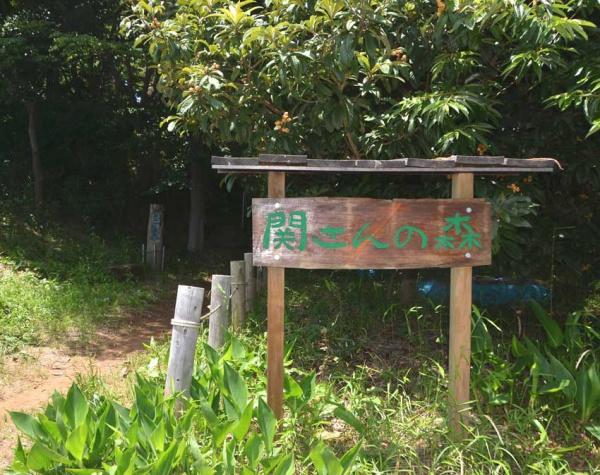 関さん森850